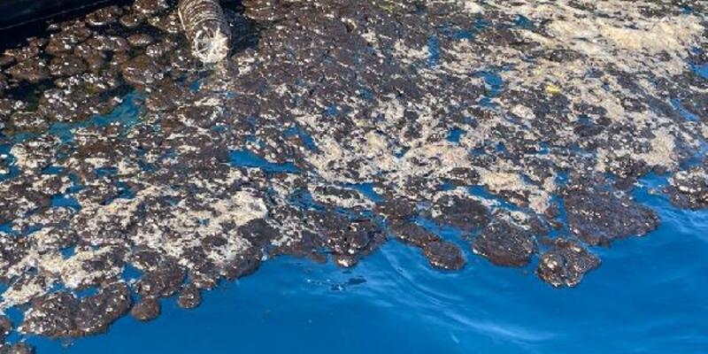 Samandağ sahilindeki petrol atığı temizliğinde 5'inci gün