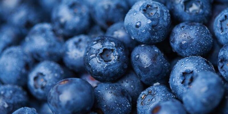 Varisleriniz için faydalı 5 süper gıda