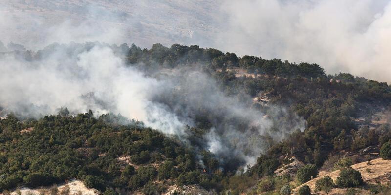 SON DAKİKA: Ankara'da çıkan orman yangını kontrol altında