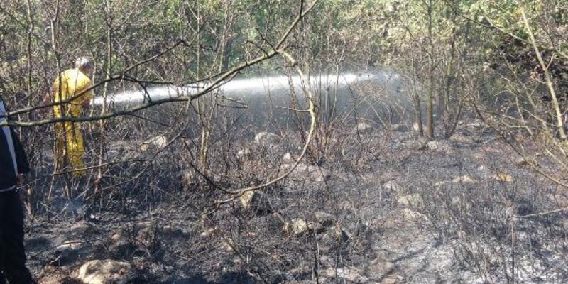 Bursa'daki orman yangını söndürüldü