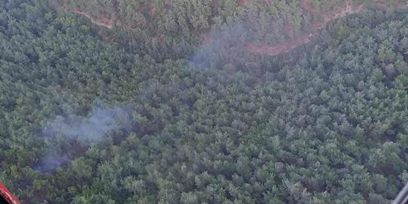 Manisa'da yıldırım düştü, orman yangını çıktı