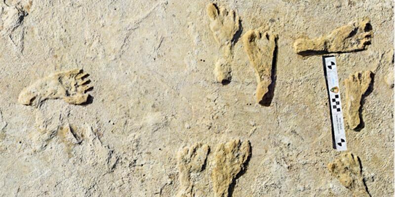 ABD'de 23 bin yıllık insan ayak izleri keşfedildi