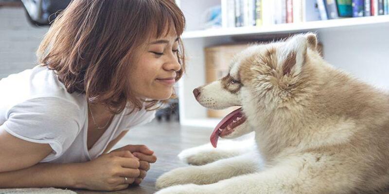 Evcil hayvanlar zihinsel sağlığınızı nasıl iyileştirebilir?