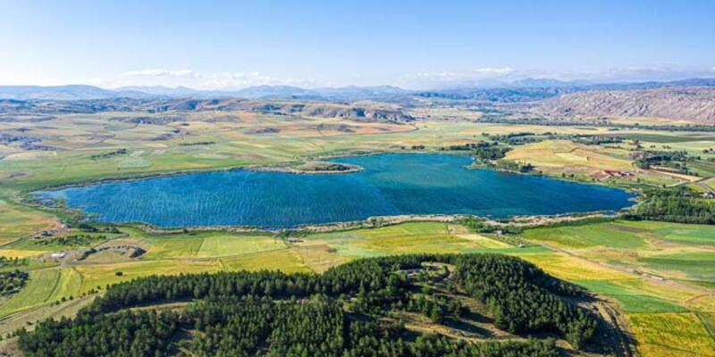 Sivas'taki kuş cenneti Hafik Gölü, doğaseverlerin ilgisini çekiyor