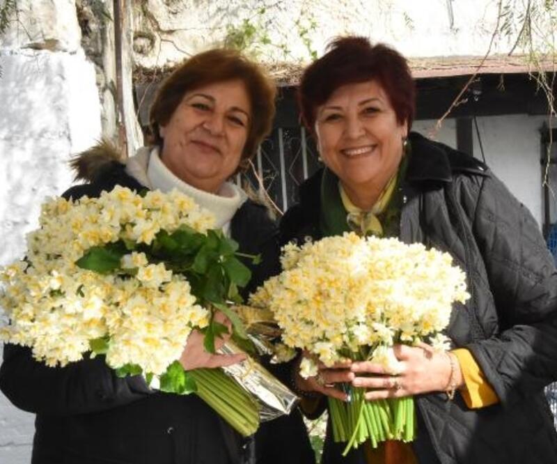 Karaburun Nergis Festivali buruk başladı