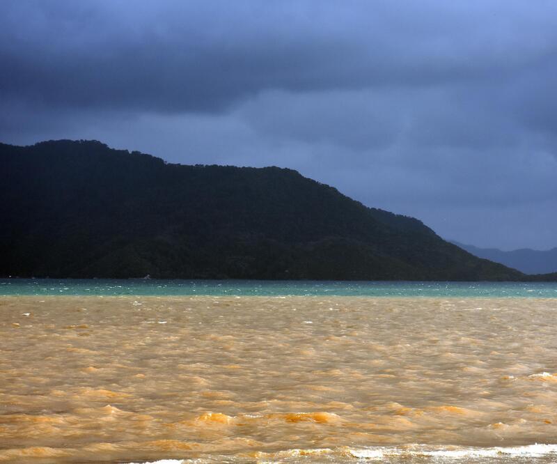 Denizin rengi kahverengiye döndü