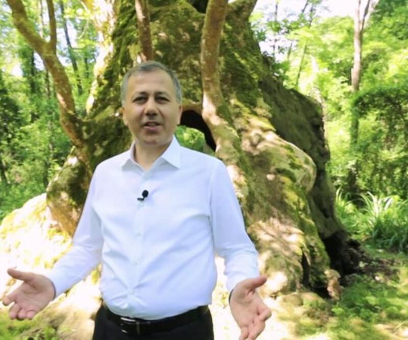 Yerlikaya'dan Çevre Günü paylaşımı   Video