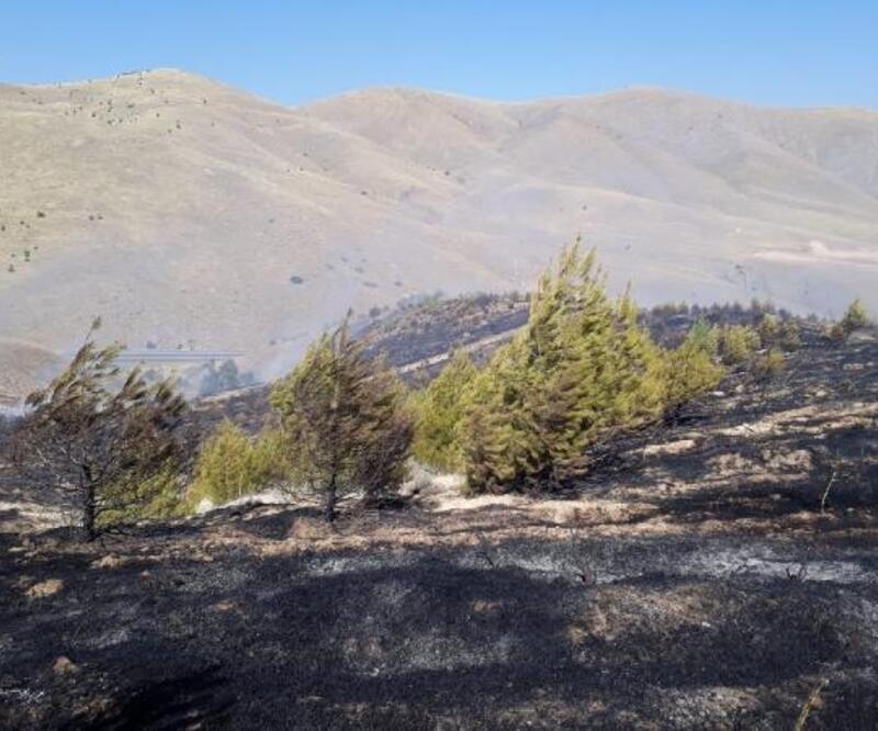 Elazığ'da 50 dönümlük kırsal alan yandı