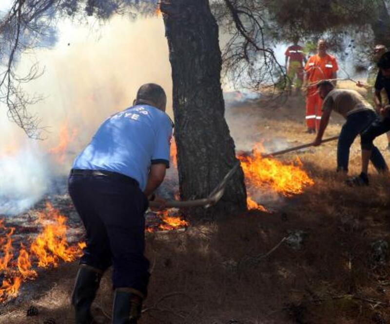 Son dakika... Orman yangınına kaymakam ve vatandaşlar da müdahale etti