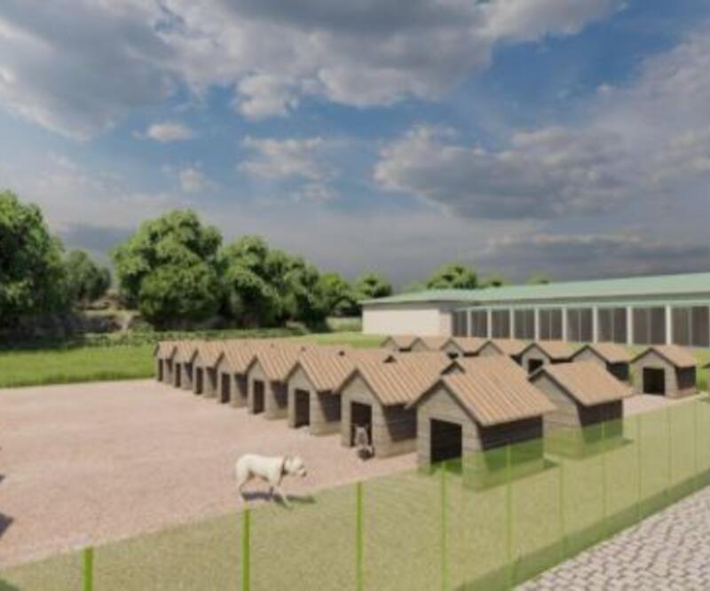Son Dakika Haberleri: Hayvan hastanesinin temeli atıldı | Video