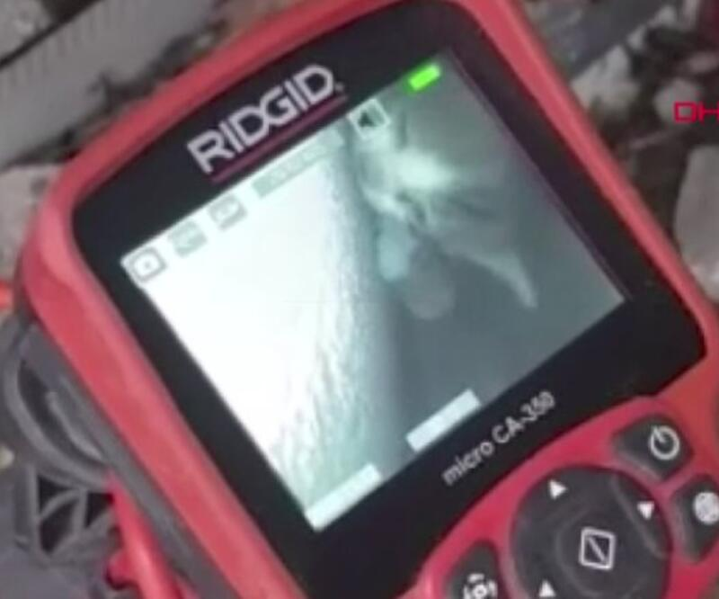 Yavru kediyi kurtarma operasyonu | Video