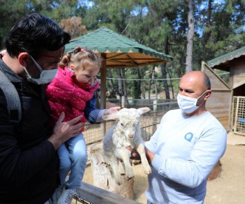 Antalya Hayvanat Bahçesi'nde yeni yavru sevinci