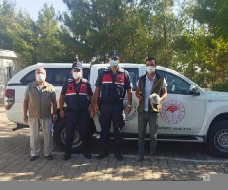 Kaçak 5 avcı suçüstü yakalandı