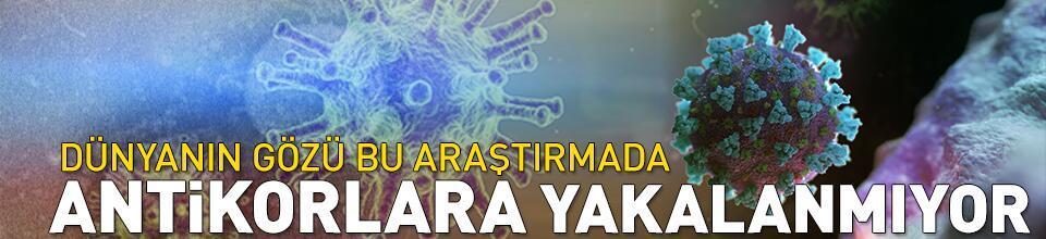 Koronavirüs mutasyonu tespit edildi