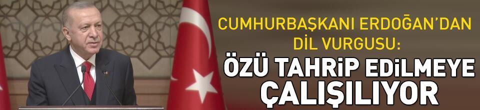 Cumhurbaşkanı Erdoğan'dan dil vurgusu