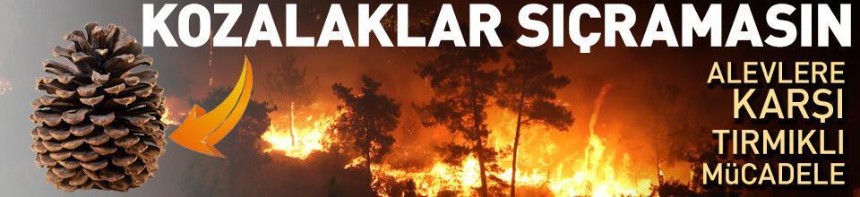 Yangınlara karşı tırmıklı mücadele